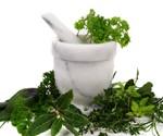 Ajurvedske biljke i njihova primena