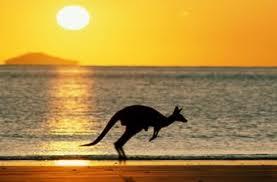 KARAKTERNE OSOBITOSTI AUSTRALACA