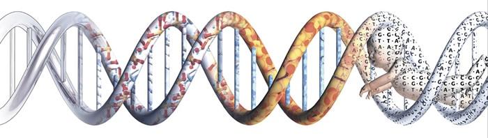 Poetičnost genoma umrlog prijatelja...