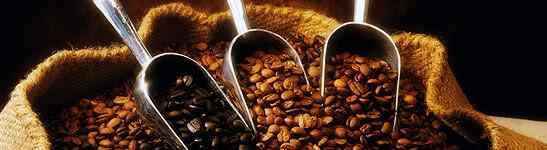 Kako je kava osvojila svijet ???