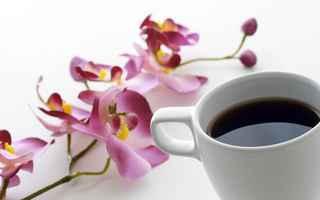 Uredničko: Dan po dan - može se i bez kave, kad se mora...