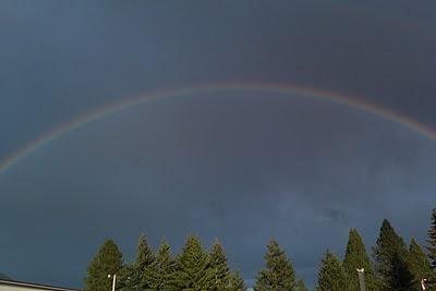 The Rainbow Samaya