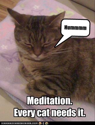 ZENIRANJE I SKENIRANJE (meditacija No 6)