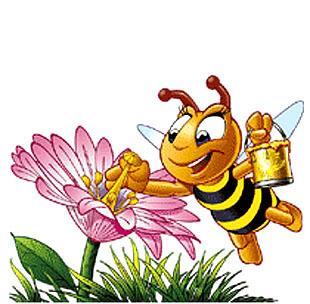 PČELA NA ISPITU