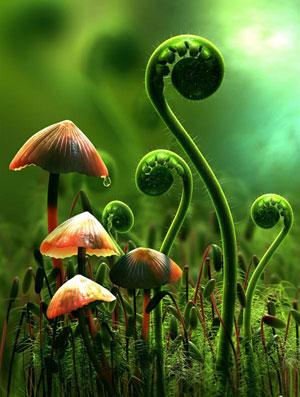 Nešumska vegetacija Hrvatske