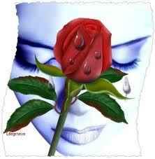 ZALJUBLJENA RUŽA