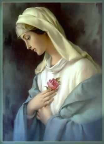 čuvaj sve dobre duše, Kraljice Mira, Majko Božja...