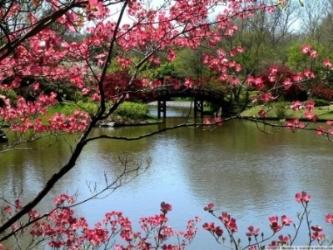 Prirodne ljepote