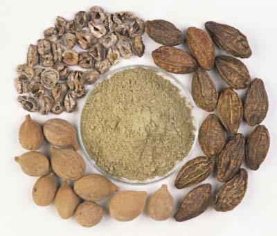Triphala - prirodna formula za detoksikaciju i poboljšanje probave