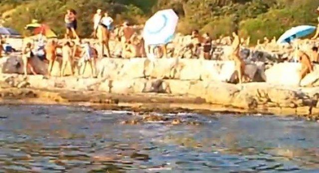 Srpski Telegraf: Na svingerskoj plaži u Rovinju cvjeta prostitucija