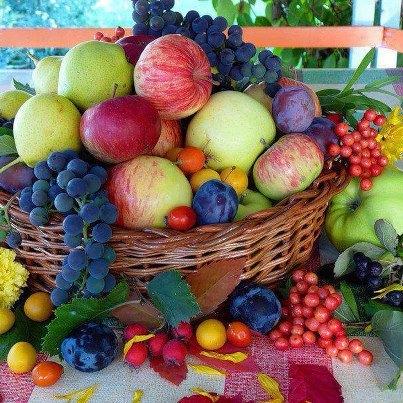 Jesen - tema u hrvatskoj poeziji