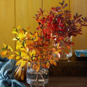 9. Barve jeseni