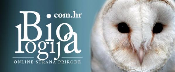 REPTILOMANIJA+ edukativna izložba egzotičnih životinja s popratnim predavanjima