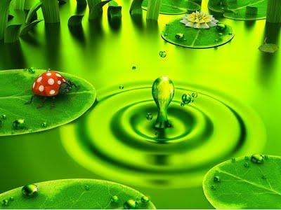 Zeleno predstavlja život (14.8.)