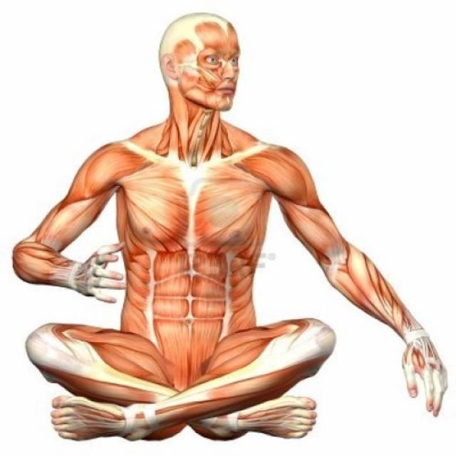 Koncentracija na dijelove tijela