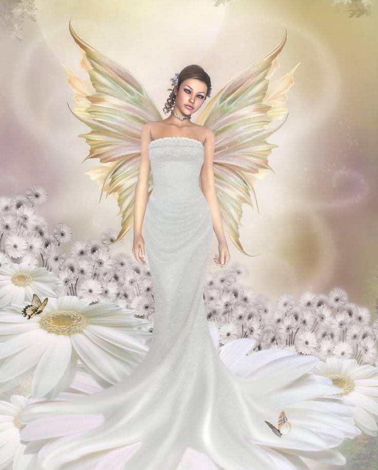 kako prepoznati anđela?