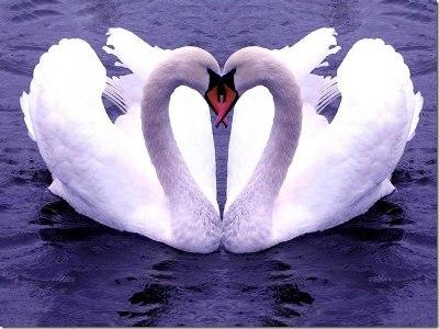 OBRED CJELINE – snaga mantre i ljubavi, SUBOTA, 3. SVIBANJ 2015,10.00 U LJUBLJANI