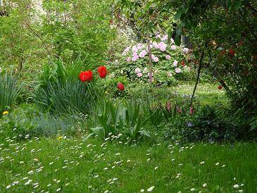 Proljeće se budi