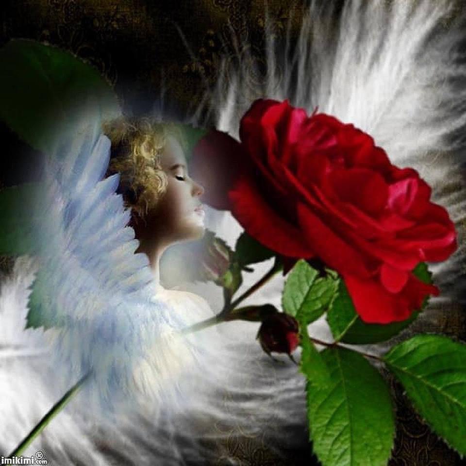 Molitva tvojih anđela iscjelitelja...