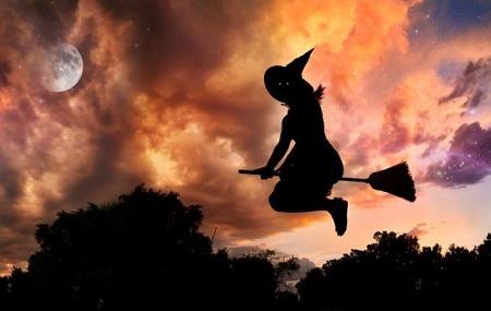 Coprnice ili možda vještice