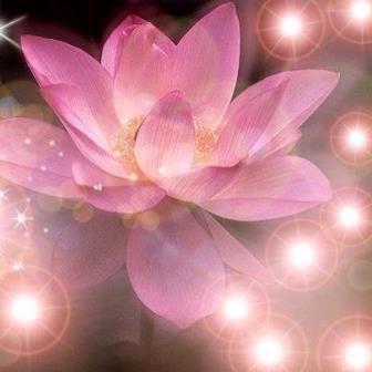 Donesite u sebe svetlo svesnosti (18. 12.)