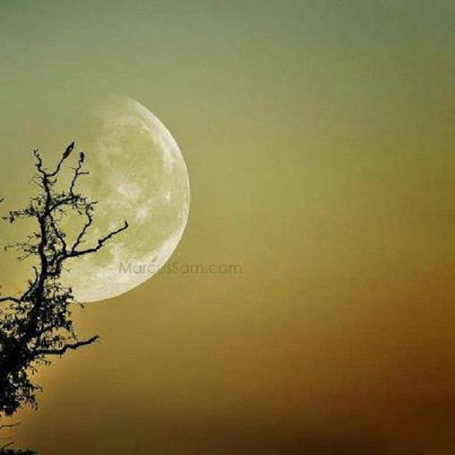 KREŠIMIR MIŠAK: Tko je doveo Mjesec – tvorevinu izvanzemaljske inteligencije – i zašto?!