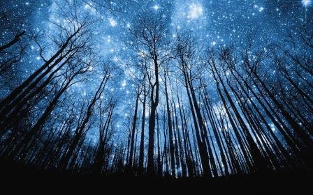 Magični dani u januaru - Bogojavljenje
