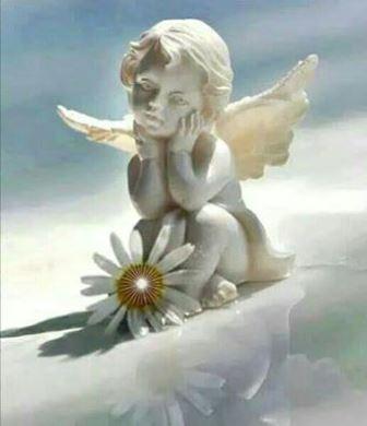 Samo Anđeli mogu prepoznati Anđela