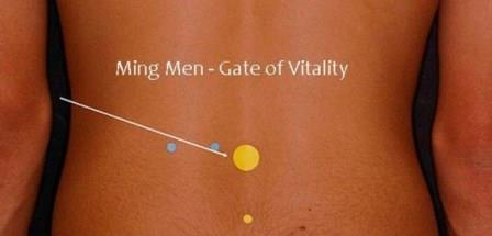 Ming men – vrata života