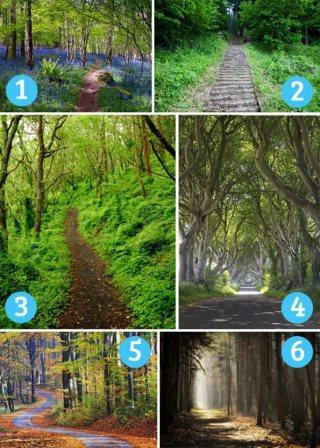 TEST: Na kojem ste sudbinskom putu?