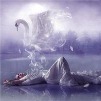 Psiha, snovi, simboli, tumačenje II