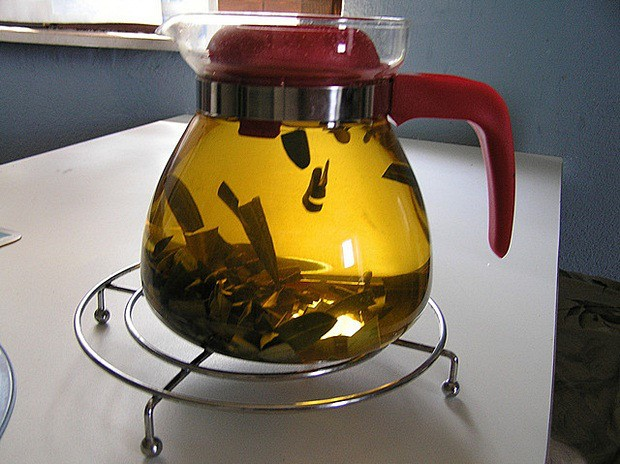 BIBLIJSKA BILJKA PUCA ZDRAVLJEM: Skuhajte ovaj čaj i ozdravite od teških bolesti!