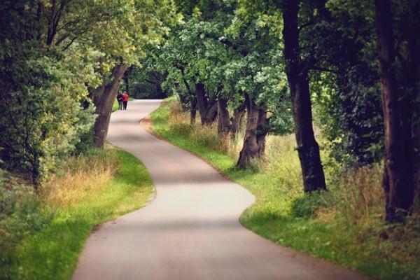 Lazarev: O kretanju i hodanju