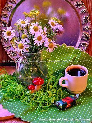 Za kavopije