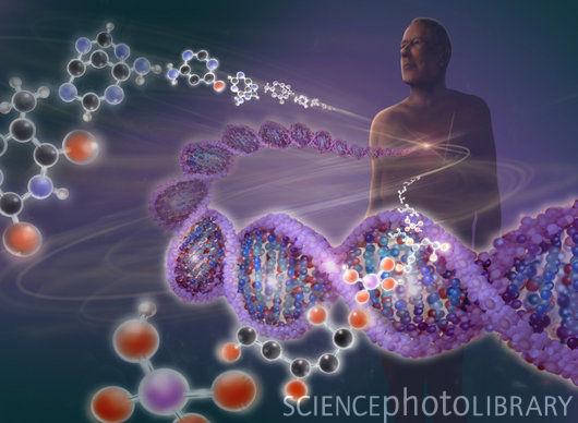 Možemo DNK mijenjati riječima???