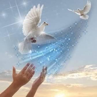 Ljubav je ptica... (1. 3.)