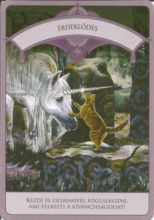 MAGIKUS UNIKORNISOK - Čarobni jednorozi; Doreen Vrttue: Interesi
