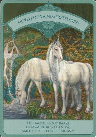 MAGIKUS UNIKORNISOK - Čarobni jednorozi; Doreen Vrttue: Oprez