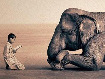 Legenda o slonu i dječacima