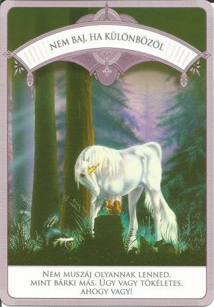 MAGIKUS UNIKORNISOK - Čarobni jednorozi; Doreen Virttue: NEVAŽNE RAZLIKE