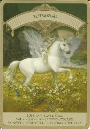 MAGIKUS UNIKORNISOK - Čarobni jednorozi; Doreen Vrttue: Inteligencija
