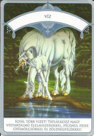 MAGIKUS UNIKORNISOK - Čarobni jednorozi; Doreen Vrttue: Voda
