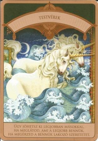 MAGIKUS UNIKORNISOK - Čarobni jednorozi; Doreen Vrttue: Braća, sestre, rođaci