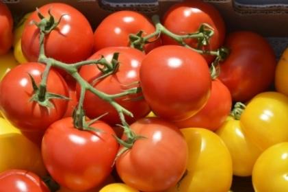 Vegetarijanska kuhinja - Gazpacho - španjolska juha od rajčice