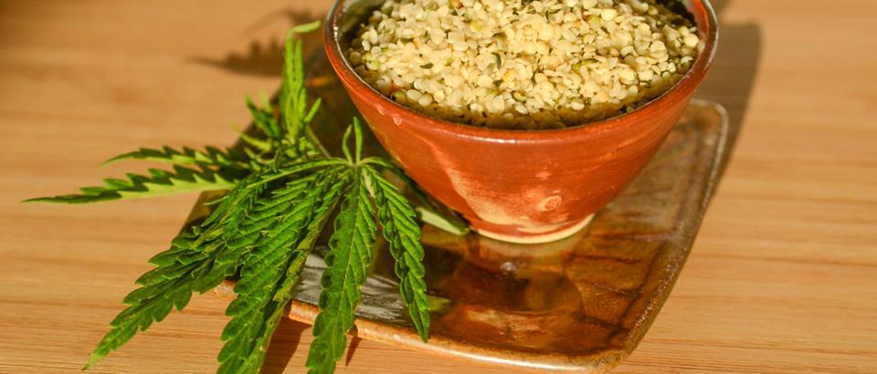 Konoplja - jedna od najvažnijih biljki na svijetu, pojašnjva dr. Paul Hornby