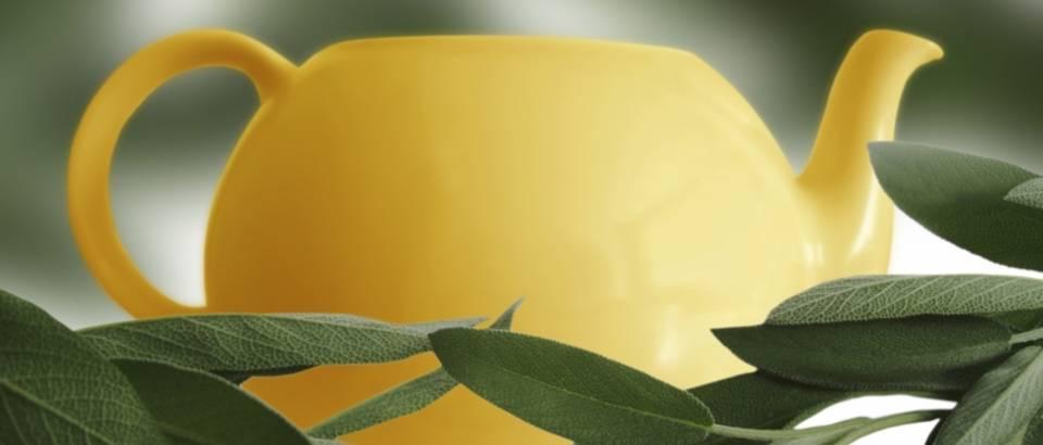 4 biljna aduta koja pomažu kod upale zuba