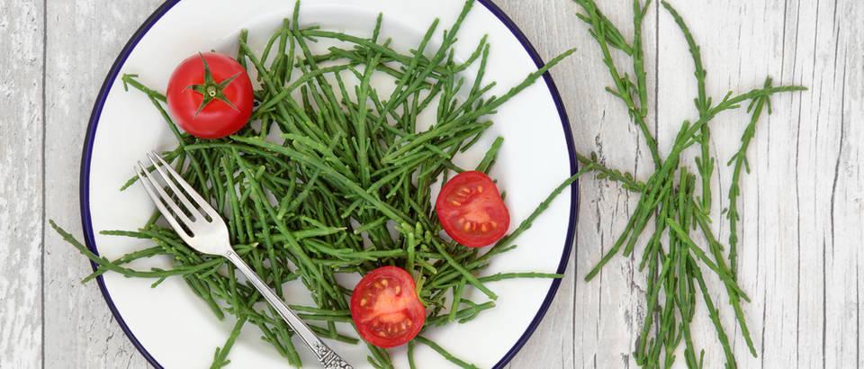 Motar - divlje povrće s okusom mora odlično je za detoksikaciju i mršavljenje