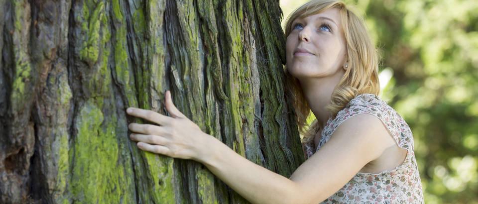 šumski dar