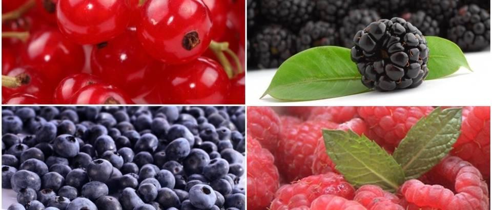 Bobičasto voće za zdravlje
