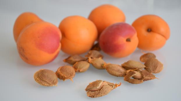 Sjemenke marelice